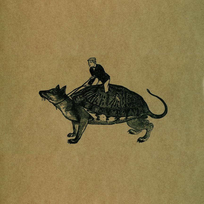 Tigres Leones - Mucho Spirito
