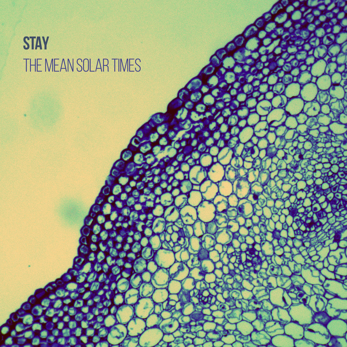 Stay – The Mean Solar Times
